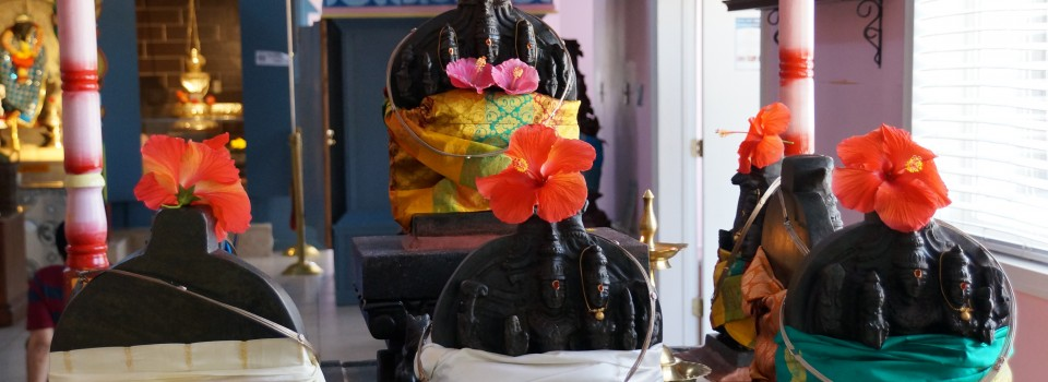 Navagrahas- Surya, Sukra, Budha